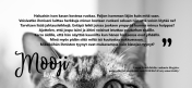kissan mietteita lauran blogista